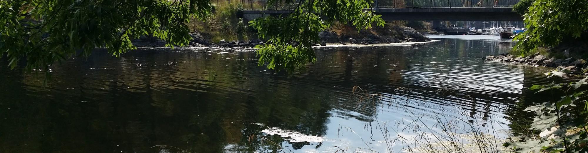 Fiskzätra – en blogg om Fisksätra